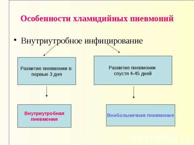 Развитие пневмонии в первые 3 дня Внутриутробная пневмония Развитие пневмонии спустя 4-45 дней Внебольничная пневмония Особенности хламидийных пневмоний Внутриутробное инфицирование