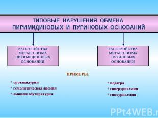 ТИПОВЫЕ НАРУШЕНИЯ ОБМЕНА ПИРИМИДИНОВЫХ И ПУРИНОВЫХ ОСНОВАНИЙ ПРИМЕРЫ: оротацидур