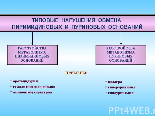 ТИПОВЫЕ НАРУШЕНИЯ ОБМЕНА ПИРИМИДИНОВЫХ И ПУРИНОВЫХ ОСНОВАНИЙ ПРИМЕРЫ: оротацидурия гемолитическая анемия аминоизобутиратурия подагра гиперурикемия гипоурикемия РАССТРОЙСТВА МЕТАБОЛИЗМА ПИРИМИДИНОВЫХ ОСНОВАНИЙ РАССТРОЙСТВА МЕТАБОЛИЗМА ПУРИНОВЫХ ОСНОВАНИЙ