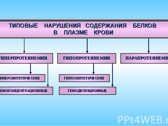 ТИПОВЫЕ НАРУШЕНИЯ СОДЕРЖАНИЯ БЕЛКОВ В ПЛАЗМЕ КРОВИ ГИПЕРПРОТЕИНЕМИИ ПАРАПРОТЕИНЕМИИ ГИПОПРОТЕИНЕМИИ ГИПЕРСИНТЕТИЧЕСКИЕ ГЕМОКОНЦЕНТРАЦИОННЫЕ ГИПОСИНТЕТИЧЕСКИЕ ГЕМОДИЛЮЦИОННЫЕ