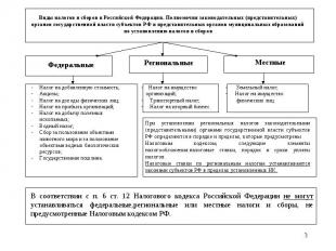 * Виды налогов и сборов в Российской Федерации. Полномочия законодательных (пред