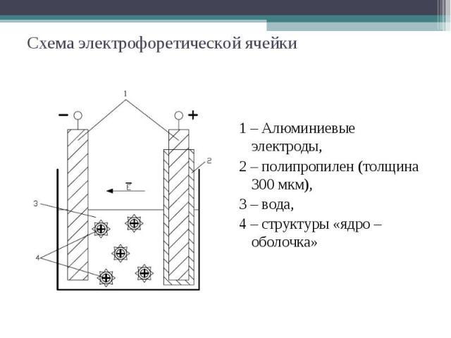 Схема электрофоретической ячейки 1 – Алюминиевые электроды, 2 – полипропилен (толщина 300 мкм), 3 – вода, 4 – структуры «ядро – оболочка»