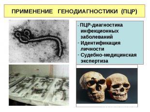 - ПЦР-диагностика инфекционных заболеваний Идентификация личности Судебно-медици