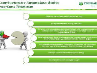 * Сотрудничество с Гарантийным фондом Республики Татарстан