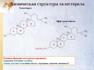 СН3 СН3 СН3 СН3 Н3С Эфир холестерола СН3(CH2)COO Химическая структура холестерол