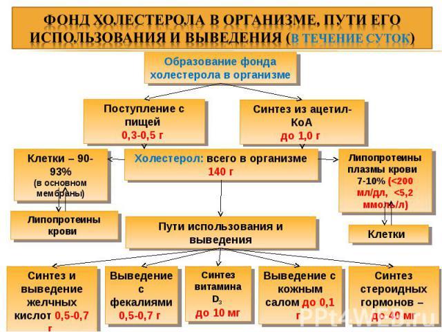 Образование фонда холестерола в организме Поступление с пищей 0,3-0,5 г Синтез из ацетил-КоА до 1,0 г Липопротеины плазмы крови 7-10% (