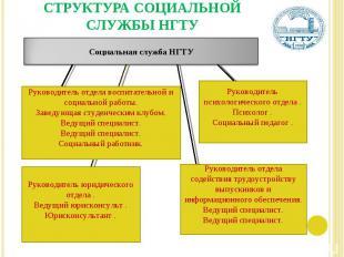 СТРУКТУРА СОЦИАЛЬНОЙ СЛУЖБЫ НГТУ Руководитель отдела воспитательной и социальной