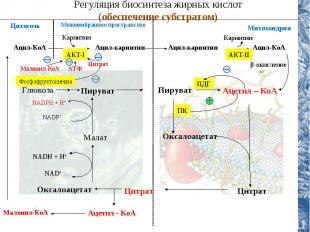 NADH + H+ NAD+ Регуляция биосинтеза жирных кислот (обеспечение субстратом) Цитоз