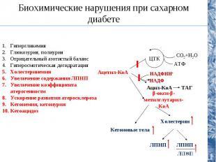 Биохимические нарушения при сахарном диабете Гипергликемия Глюкозурия, полиурия