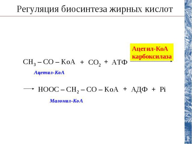 Регуляция биосинтеза жирных кислот CH3 – CO – KoA CO2 АТФ + + Ацетил-КоА карбоксилаза НООС – CH2 – CO – KoA АДФ + + Pi Ацетил-КоА Малонил-КоА