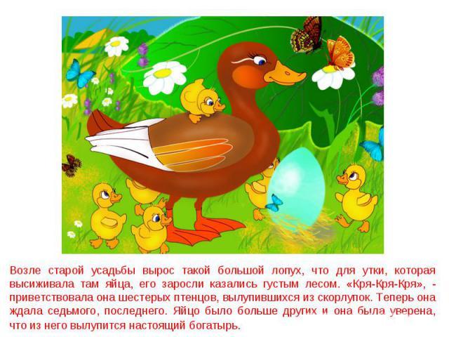 Возле старой усадьбы вырос такой большой лопух, что для утки, которая высиживала там яйца, его заросли казались густым лесом. «Кря-Кря-Кря», - приветствовала она шестерых птенцов, вылупившихся из скорлупок. Теперь она ждала седьмого, последнего. Яйц…