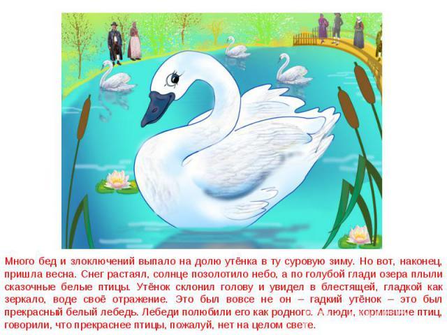Много бед и злоключений выпало на долю утёнка в ту суровую зиму. Но вот, наконец, пришла весна. Снег растаял, солнце позолотило небо, а по голубой глади озера плыли сказочные белые птицы. Утёнок склонил голову и увидел в блестящей, гладкой как зерка…