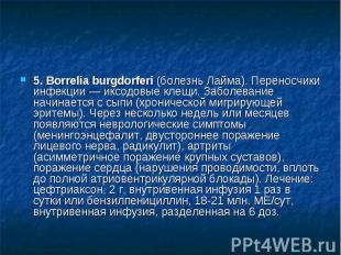 5. Borrelia burgdorferi (болезнь Лайма). Переносчики инфекции — иксодовые клещи.