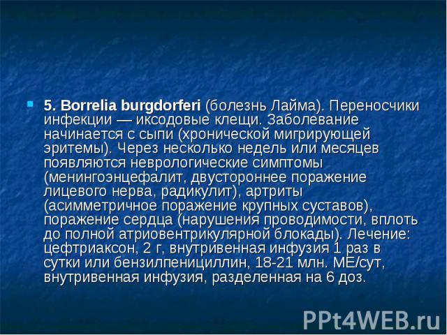 5. Borrelia burgdorferi (болезнь Лайма). Переносчики инфекции — иксодовые клещи. Заболевание начинается с сыпи (хронической мигрирующей эритемы). Через несколько недель или месяцев появляются неврологические симптомы (менингоэнцефалит, двустороннее …