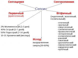 Септицемия Септикопиемия Сепсис Первичный (криптогенный) Вторичный (эндогенный,