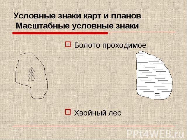 Условные знаки карт и планов Масштабные условные знаки Болото проходимое Хвойный лес