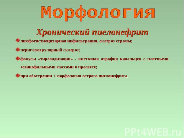 лимфогистиоцитарная инфильтрация, склероз стромы; перигломерулярный склероз; фокусы «тиреоидизации» - кистозная атрофия канальцев с плотными эозинофильными массами в просвете; при обострении + морфология острого пиелонефрита. Хронический пиелонефрит