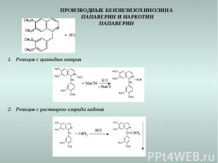 ПРОИЗВОДНЫЕ БЕНЗИЛИЗОХИНОЛИНА ПАПАВЕРИН И НАРКОТИН ПАПАВЕРИН Реакция с цианидом