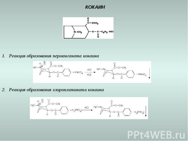КОКАИН Реакция образования перманганата кокаина Реакция образования хлороплатината кокаина