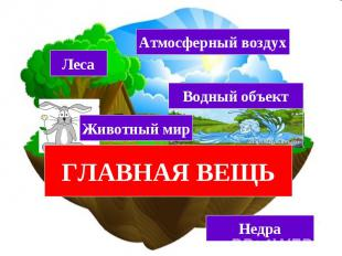 ЗЕМЕЛЬНЫЙ УЧАСТОК (ЗЕМЛЯ) Леса Атмосферный воздух Животный мир Водный объект Нед