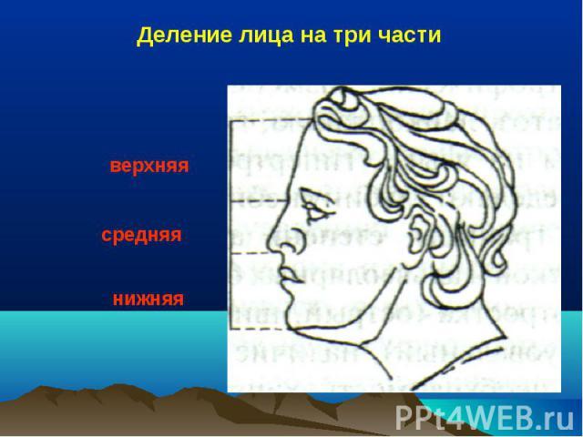 верхняя средняя нижняя Деление лица на три части