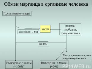 Обмен марганца в организме человека Поступление с пищей Выведение с калом (~100%