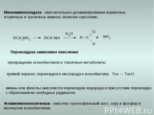 Пероксидаза-зависимое окисление превращение ксенобиотиков в токсичные метаболиты
