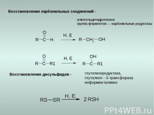 Восстановление карбонильных соединений - алкогольдегидрогеназа группа ферментов