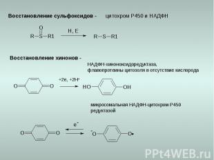Восстановление сульфоксидов - цитохром Р450 и НАДФН Восстановление хинонов - +2e