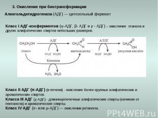 3. Окисление при биотрансформации Алкогольдегидрогеназа (АДГ) — цитозольный ферм