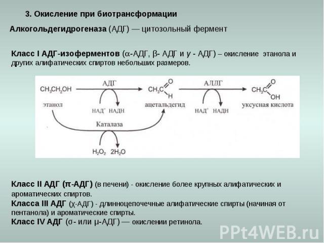 3. Окисление при биотрансформации Алкогольдегидрогеназа (АДГ) — цитозольный фермент Класс I АДГ-изоферментов (-АДГ, β- АДГ и γ - АДГ) – окисление этанола и других алифатических спиртов небольших размеров. Класс II АДГ (π-АДГ) (в печени) - окисление …