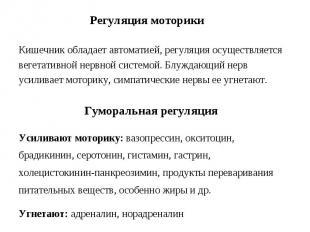 Регуляция моторики Кишечник обладает автоматией, регуляция осуществляется вегета