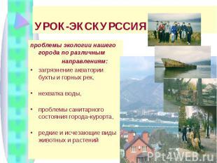УРОК-ЭКСКУРССИЯ: проблемы экологии нашего города по различным направлениям: загр