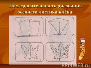 Последовательность рисования осеннего листика клёна