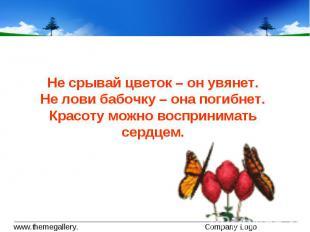 Не срывай цветок – он увянет.Не лови бабочку – она погибнет.Красоту можно воспри