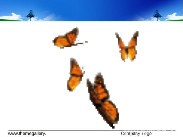 Не срывай цветок – он увянет. Не лови бабочку – она погибнет. Красоту можно воспринимать сердцем.