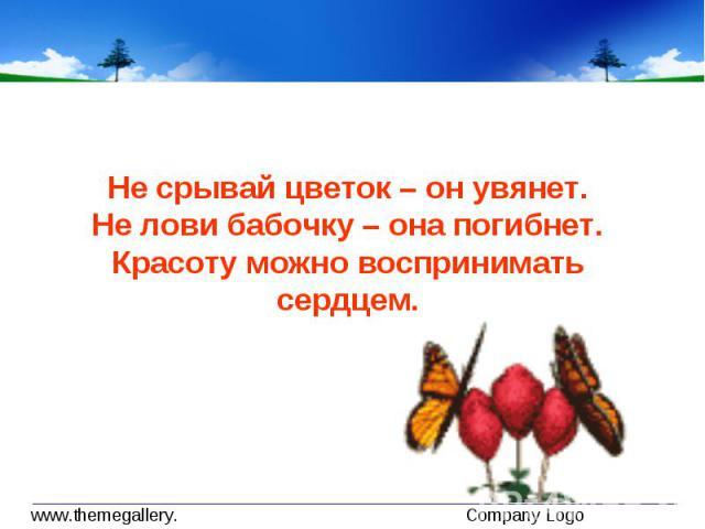 Не срывай цветок – он увянет.Не лови бабочку – она погибнет.Красоту можно воспринимать сердцем.
