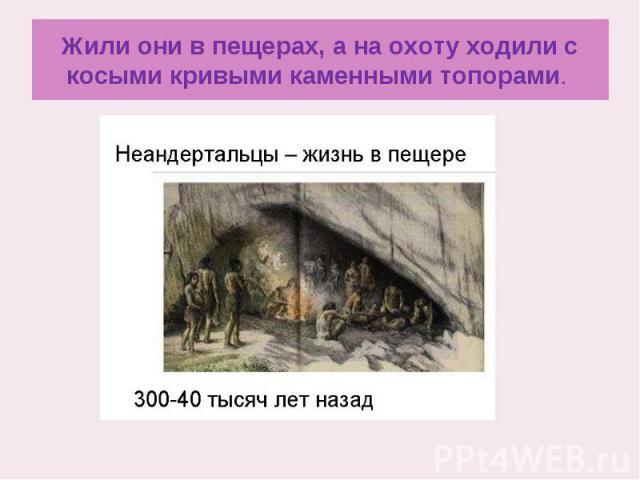 Жили они в пещерах, а на охоту ходили с косыми кривыми каменными топорами.