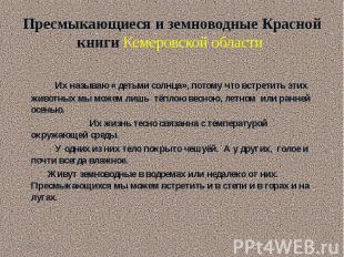 Пресмыкающиеся и земноводные Красной книги Кемеровской области Их называю « деть