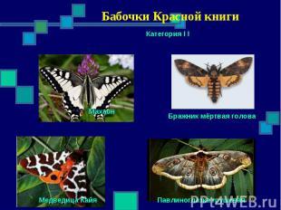 Бабочки Красной книги Категория I I Махаон Бражник мёртвая голова Павлиноглазка