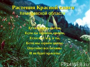 Растения Красной книги Кемеровской области Если я сорву цветок, Если ты сорвешь