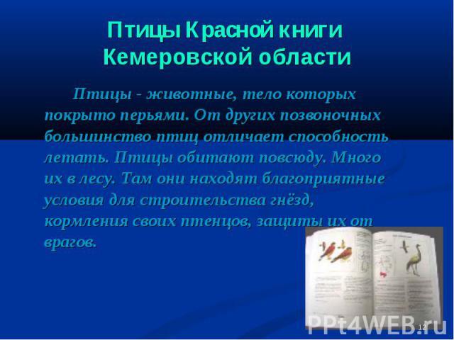 Птицы Красной книги Кемеровской области Птицы - животные, тело которых покрыто перьями. От других позвоночных большинство птиц отличает способность летать. Птицы обитают повсюду. Много их в лесу. Там они находят благоприятные условия для строительст…