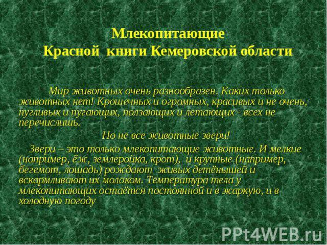 Млекопитающие Красной книги Кемеровской области Мир животных очень разнообразен. Каких только животных нет! Крошечных и огромных, красивых и не очень, пугливых и пугающих, ползающих и летающих - всех не перечислишь. Но не все животные звери! Звери –…