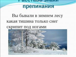 Расставь знаки препинания Вы бывали в зимнем лесу какая тишина только снег скрип
