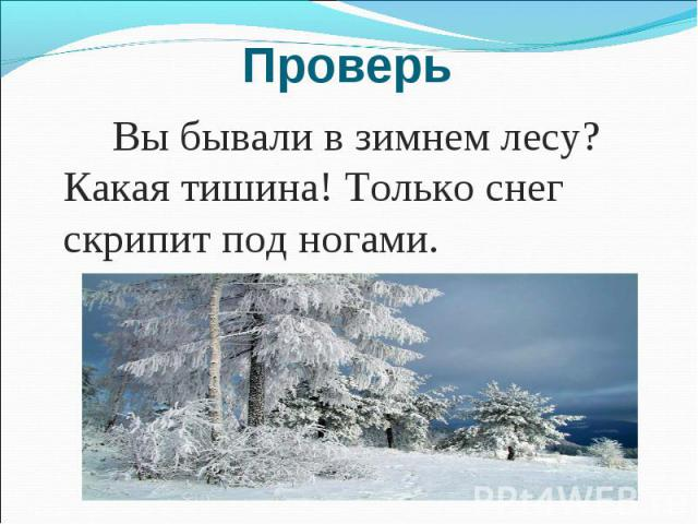 Проверь Вы бывали в зимнем лесу? Какая тишина! Только снег скрипит под ногами.