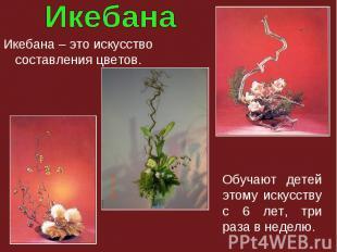 Икебана – это искусство составления цветов. Обучают детей этому искусству с 6 ле