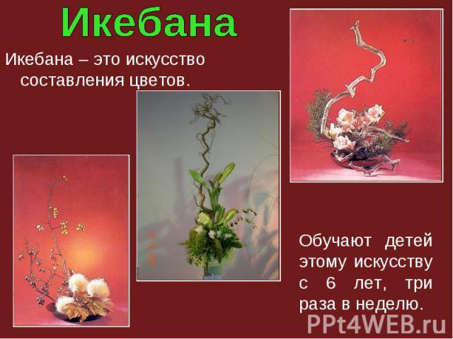 Икебана – это искусство составления цветов. Обучают детей этому искусству с 6 лет, три раза в неделю.