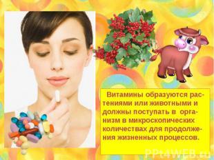 Витамины образуются рас- тениями или животными и должны поступать в орга- низм в