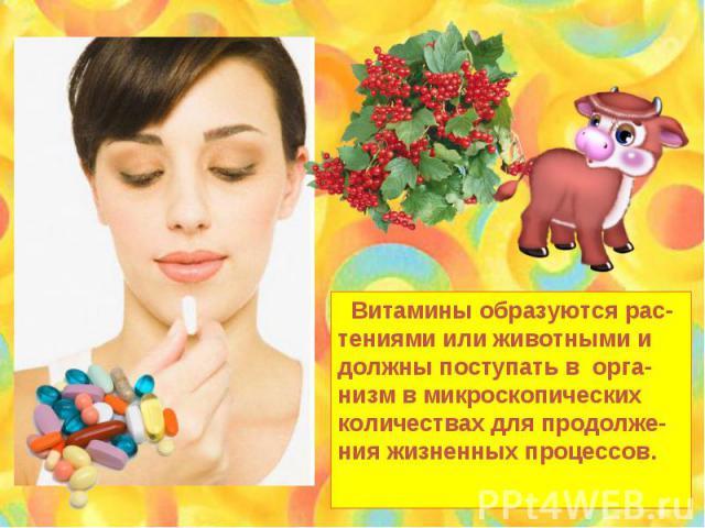 Витамины образуются рас- тениями или животными и должны поступать в орга- низм в микроскопических количествах для продолже-ния жизненных процессов.