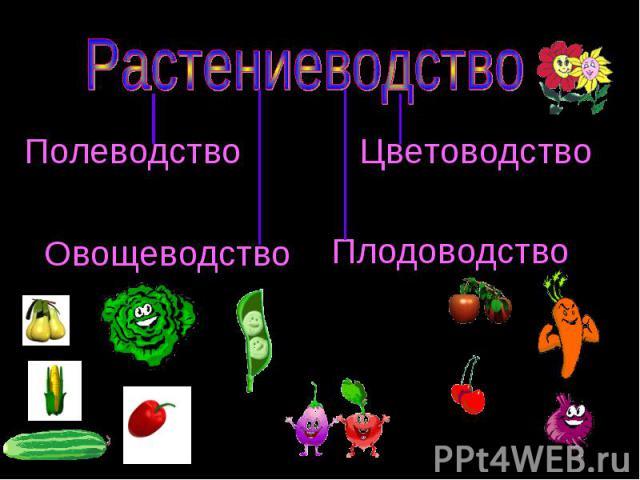 Полеводство Овощеводство Цветоводство Плодоводство